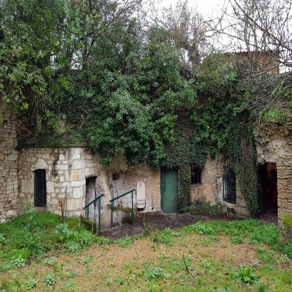 Offres de vente Cave Saumur 49400